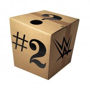 WWE Mystery Package #2