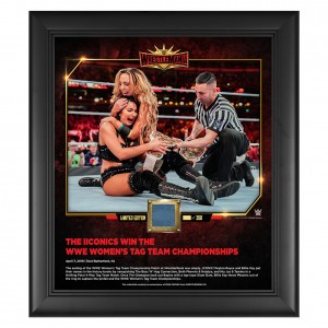 The IIconics WrestleMania 35 15 x 17 Framed Plaque w/ Ring Canvas