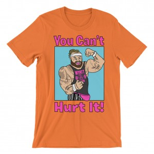 "Bray Wyatt ""You Can't Hurt It"" T-Shirt"