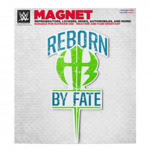 "The Hardy Boyz ""Reborn By Fate"" Car Magnet"