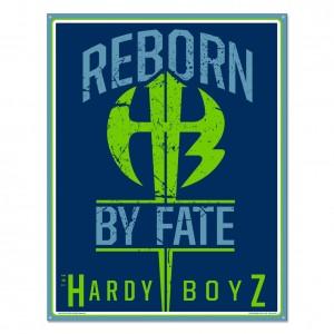 The Hardy Boyz Metal Sign