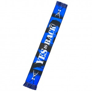 "Daniel Bryan ""Yes is Back"" Scarf"