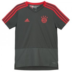 FC Bayern Training Jersey - Dark Green - Kids