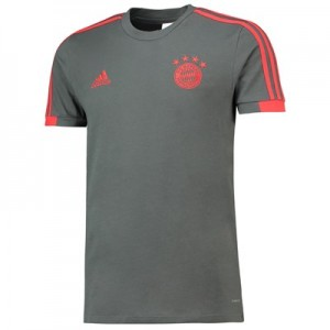 FC Bayern Training T-Shirt - Dark Green