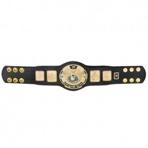 WWE Attitude Era Championship Mini Replica Title