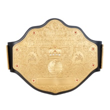 WCW Heavyweight Championship Replica Belt
