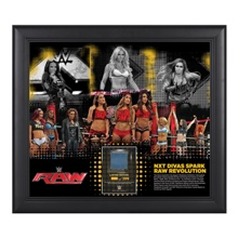 NXT Divas RAW Revolution 15 x 17 Framed Ring Canvas Photo Collage