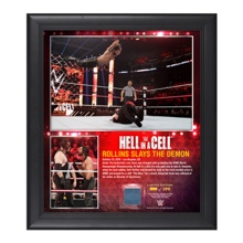 Seth Rollins Hell in a Cell 2015 15 x 17 Photo Collage Plaque