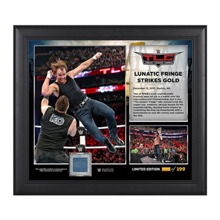 WWE TLC 2015 Dean Ambrose 15 x 17 Photo Collage Plaque