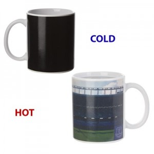 Everton Colour Stadium Heat Change Mug
