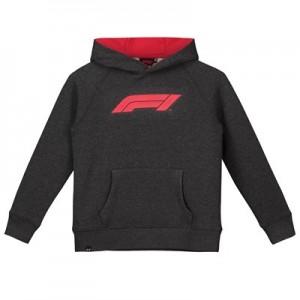Formula 1 Essentials Logo Hoodie - Grey - Kids