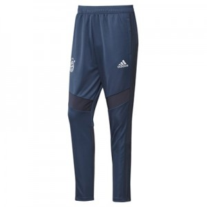 FC Bayern Training Pant - Navy