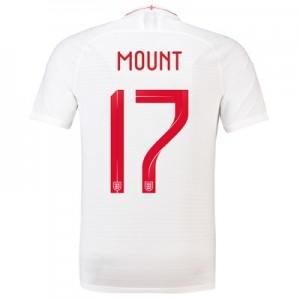 England Home Vapor Match Shirt 2018 with Mount 17 printing