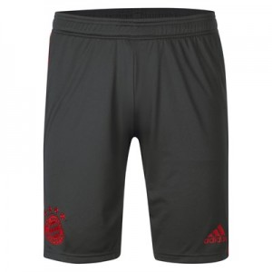 FC Bayern Training Short - Dark Green