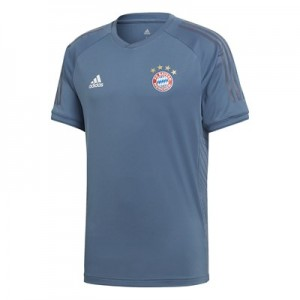 FC Bayern UCL Training Jersey - Grey