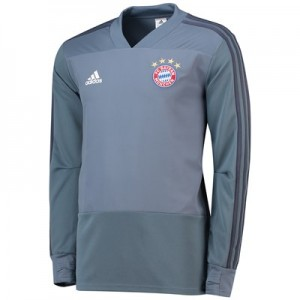 FC Bayern UCL Training Top - Grey