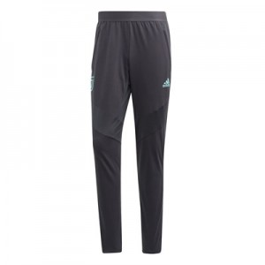 Juventus UCL Training Pant - Grey
