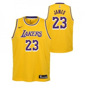 Nike Los Angeles Lakers Nike Icon Swingman Jersey - LeBron James - Youth Los Angeles Lakers Nike Icon Swingman Jersey - LeBron James - Youth