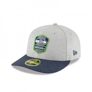 Seattle Seahawks New Era Official Sideline Road Low Profile 59FIFTY Fitted Cap